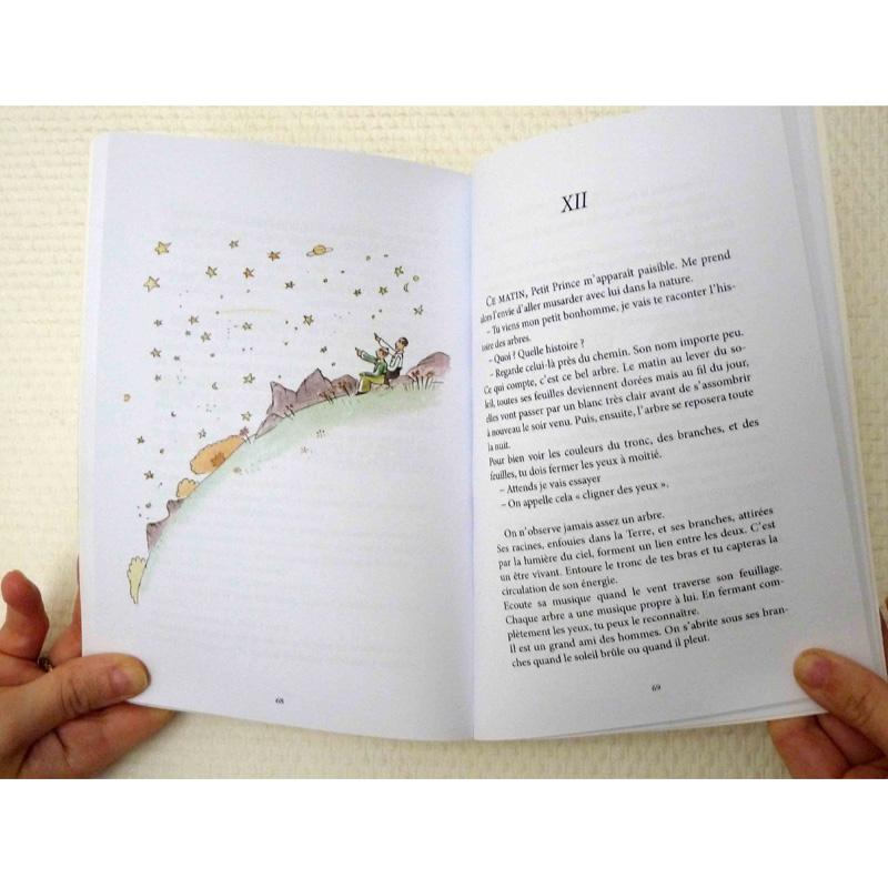 jean-martial-dubois_editions___le_petit_prince-art06
